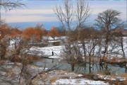 20 Mile Creek