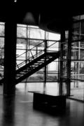 cobra stairs