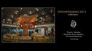 Proyecto Aqualung EXPOARTESANIAS2