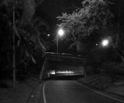 Dia 17- Un escondite - Guillermo Bruzual