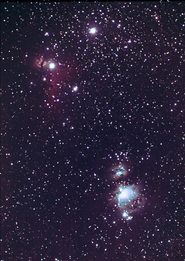 Orion och Hästhuvudet