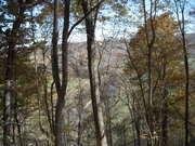 Long C November0709 Jacob's Overlook