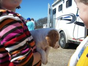 This puppy is in heaven!
