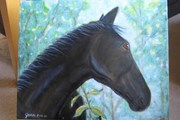 My horse paintings