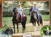 Horsein Around