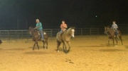 Donkey Penning Practice, 10/25/12