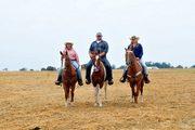 St. Jude Trail Ride Alamo, Tn. 2012