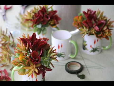 Make a Colorful Succulent Gift Mug Bouquet