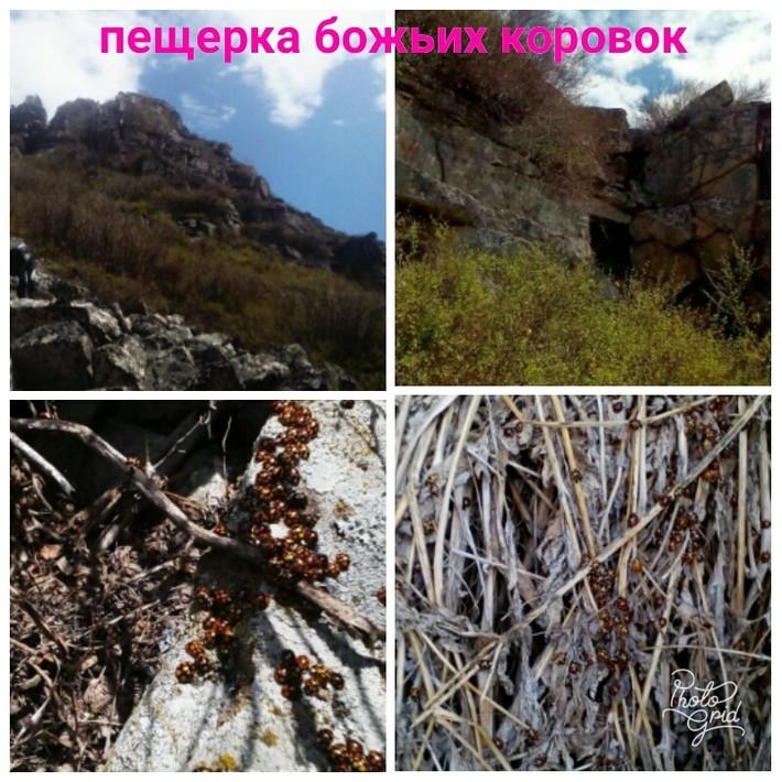 У входа в ущелье в скале пещерка