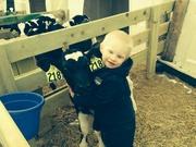 Calf love!!