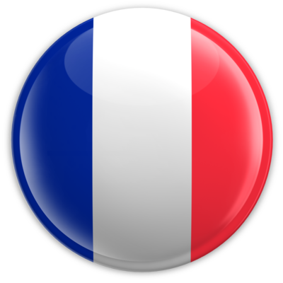 badge_button_france_ ~ WHAT ARE YOU DOING  ???????
