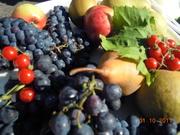 Rónafalu gyümölcsei
