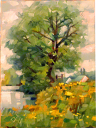 Bhun Abhainn Tree