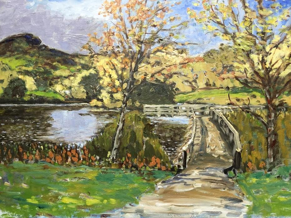 The pond at Figgate park, Edinburgh.