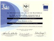 Dra. Miriam Hernández Rivera de Cruz  Diploma  Propiedad Intelectual UVG