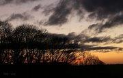 Sunrise~Sunset