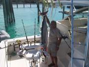"Aboard Steve's ""Tailreaser"" 85 # Wahoo"