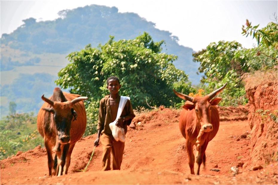 ethiopia23