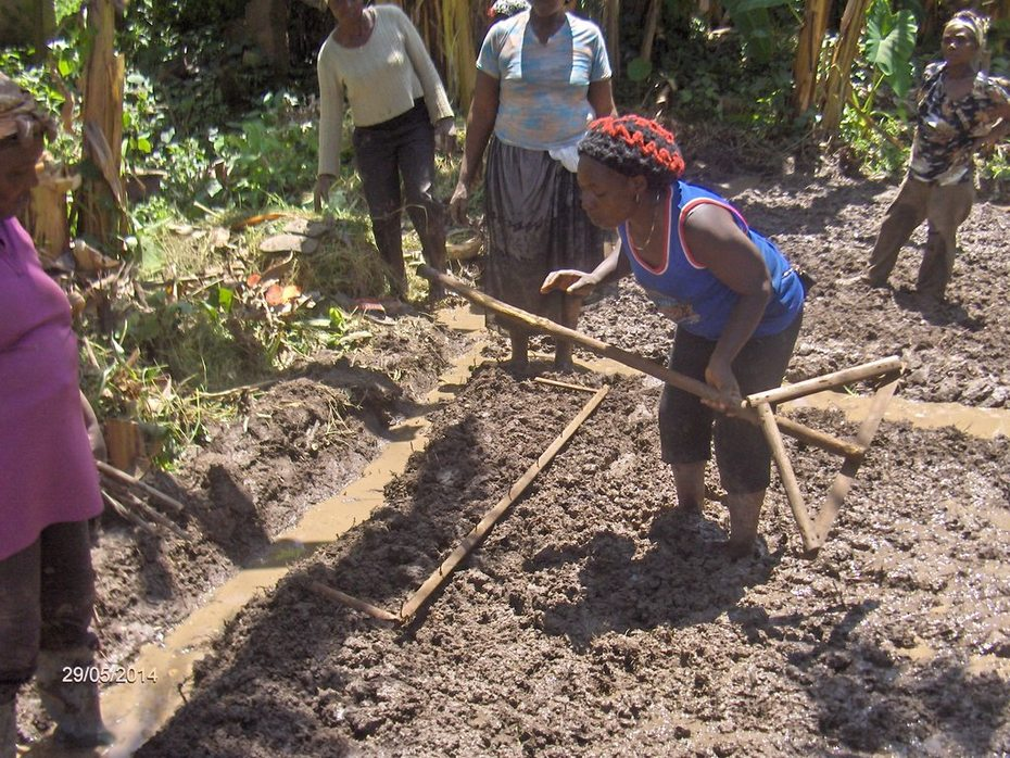 June 2014: Farmers provide training on land preparation
