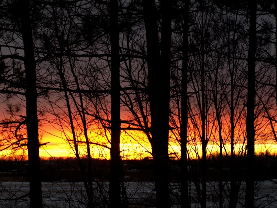 Another Backyard Sunset