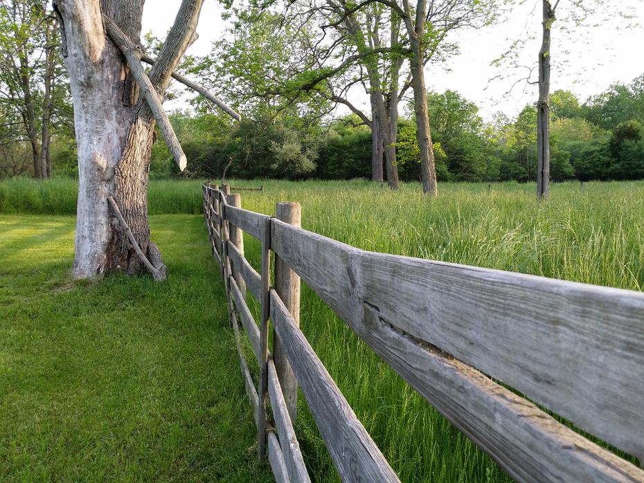 Meadow Fencing