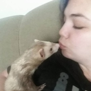 Kisses From Klaus