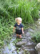 Toddlers Invade Strawberry Creek