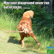 May your playground never run out of sticks