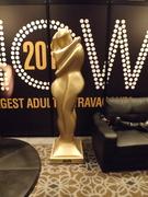 AVN 2014 Gallery