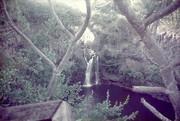 7 Sacred Falls in Maui Hawaii- 7th Pool - By Roxanne Skidmore