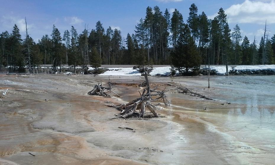 Gyser Field, Yellowstone, April 2014