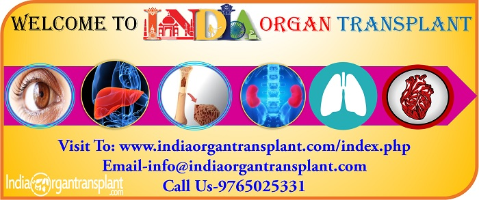 Welcome to India Organ Transplant  Offered Best and Affordable services