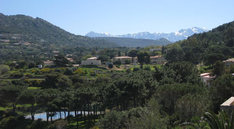Blick von Terrasse ins Hinterland