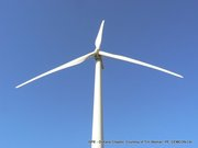 08-Windfarm6