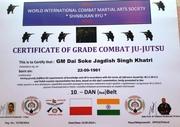 10th Dan Combat Jujitsu (4)