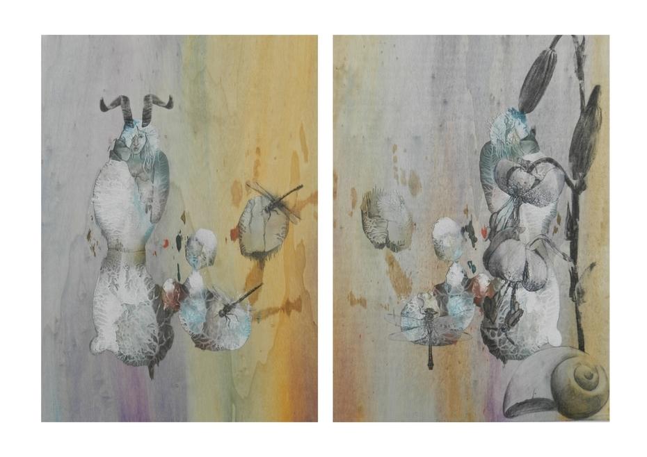 Libellen und Lilie