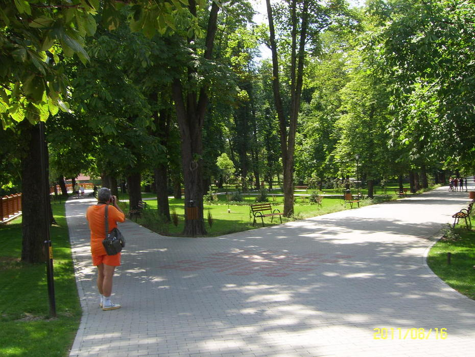 udvarhelyi Sétatér( kollégium kert)