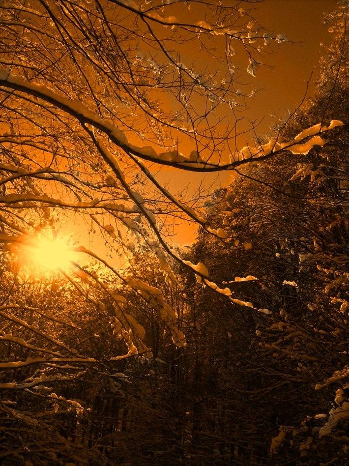 A téli napfény mosolya
