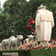 48. Virágkarnevál, Debrecen, augusztus 20.