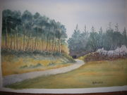 Raven Wood view at Culletons Gap.Watercolour