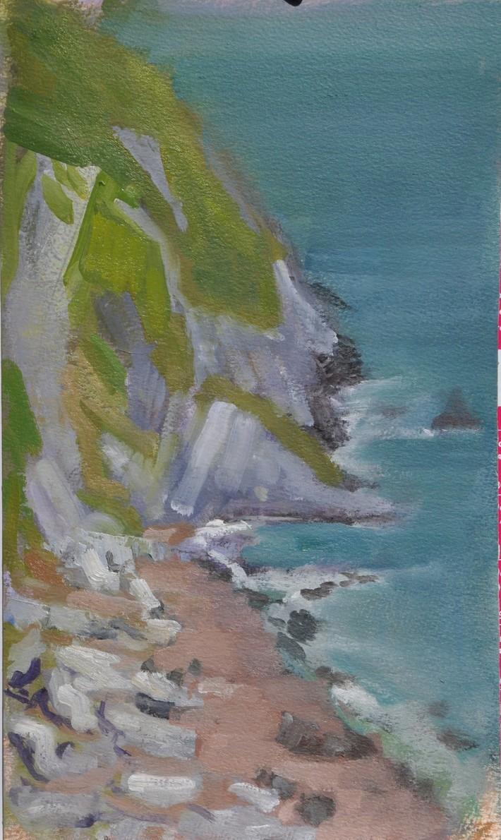 Howth Cliffs 1