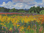 02 180703 Black-Eyed Susans, 30x40, oil on canvas