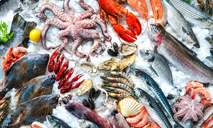 Webinar: The Sins of Seafood: 23 January 2018 - 3PM BST