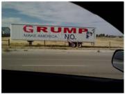 Grumpy Cat Trolled Trump