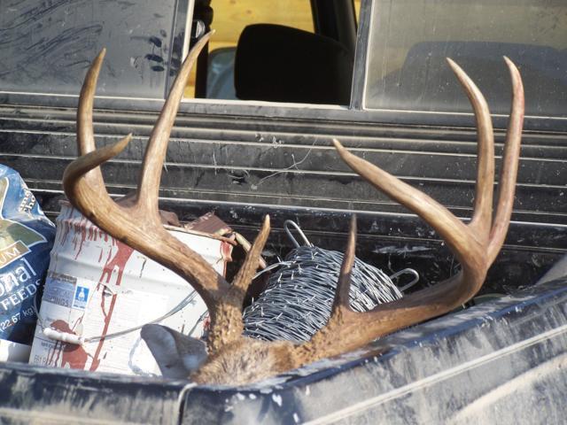 Deer Hunting 17