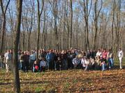 Northeastern Silvopasture Conference field tour - November 2010