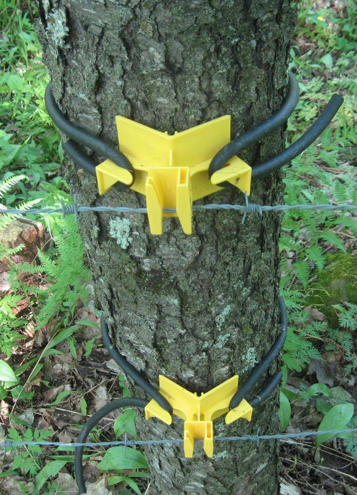 barbed wire- 2 tree insualtors