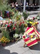 Sant Jordi 2012 006
