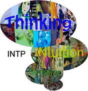 The INTP's