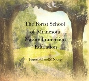 The Forest School of Minnesota